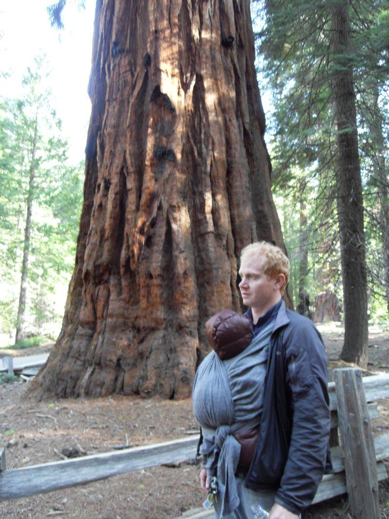 Yosemite 372